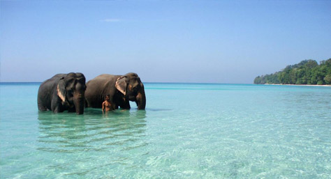 Andaman - The Black Waters!!!